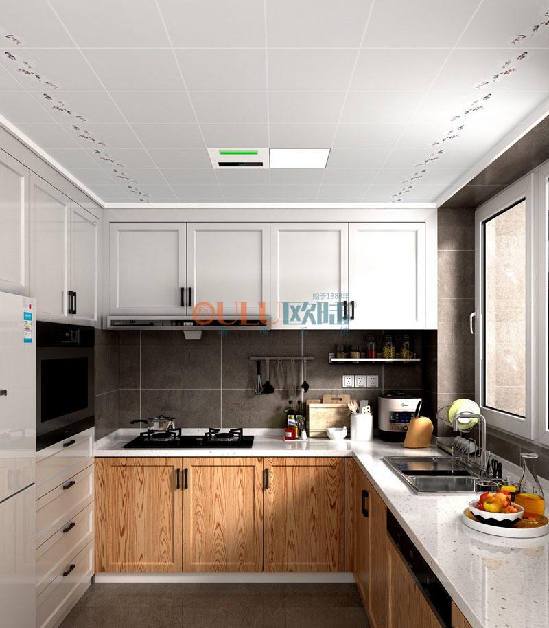 君子之家 负离子头头体育吊顶 厨房吊顶-全屋整装厨房吊顶效果图
